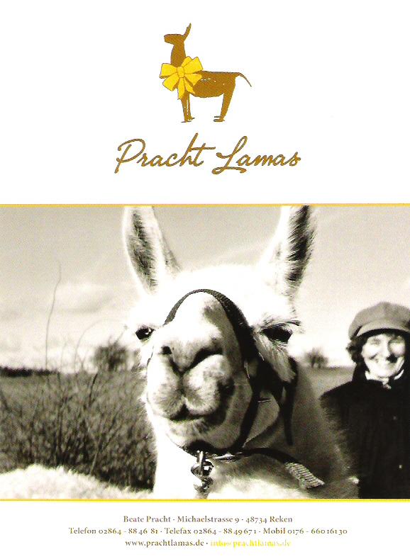 Prachtlamas Geschenk Gutscheine sind auch zu Weihnachten ein ganz besonderes Geschenk für Tierfans.