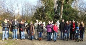 Gruppenfoto bei einer Lama-Park-Wanderung im Revierpark Nienhausen, Gelsenkirchen, Essen, Ruhrgebiet