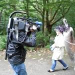 WDR Lokalzeit Ruhr (Essen) berichtet über Stressbewältigung mit Lamas am Fr, 6.6.2014, zwischen 19:30 und 20:00 Uhr, WDR Essen