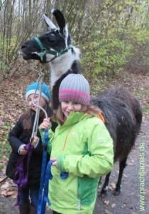 Tiererlebnisse mit Herz: Für Groß und Klein wird´s bei den Lamas unvergesslich sein
