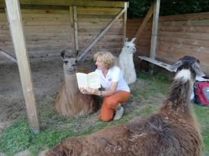 """Lesung mit Lamas - """"Das Herz, unser Glücksmuskel"""" von Beate Pracht - mit Geschichten aus der Coaching-Praxis - auch mit den Lamas"""