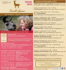 Flyer: Herbst-Programm der Prachtlamas (Gelsenkirchen/Ruhrgebiet/NRW)