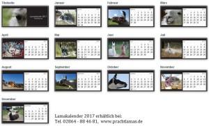 Lamakalender 2017 - Übersicht alle Monate mit Titel (Zum Vergrößern auf das Bild klicken)