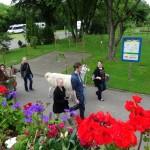 Lama-Park-Wanderung in den Ferien Sommer für Erwachsene und Kinder