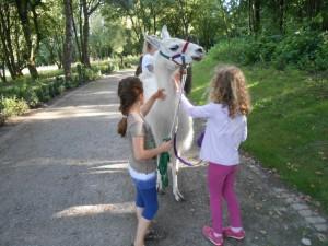 Mutig und selbstbewusst wie ein Lama - für Mädchen ab 7 Jahren, Kreativwerkstatt, Prachtlamas