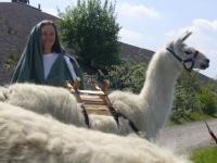 """Auch Beate Pracht spielt bei der Wüstenszene des """"Mosesfilms"""" auf dem Rungenberg mit ihren Lamas mit."""