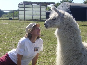 Von Herz zu Herz: Mensch - Tier - Kommunikation mit Lama Dancer
