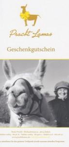 Auch zu Weihnachten sehr beliebt: Geschenk-Gutschein für eine Lamawanderung oder ein Tiererlebnis mit Lamas