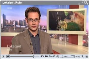 WDR-Lokalzeit-Bericht über die Lamatherapie im Ruhrgebiet