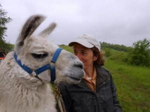 meditative Tierbegegnung lässt uns bei uns selbst ankommen