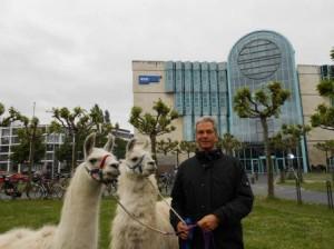 DSCN5555_Berater und Coach Tino Ahlers mit den Prachtlamas Dancer und Kasimir vor dem WDR Düsseldorf