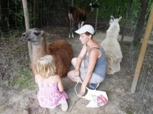 Lama Ferien Erlebnis 2013 an der Kinderburg im Gesundheitspark Nienhausen mit den Prachtlamas