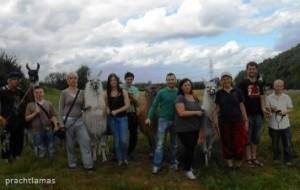 Sozialkompetenztraining mit den Prachtlamas mit Jugendlichen des Projektes