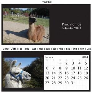 Lamakalender 2014 Titel- und Januarbild, (c) Prachtlamas