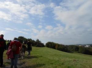 Lama-Wanderungen im Ruhrgebiet, in Essen, Gelsenkirchen, Buer. Foto: Prachtlamas