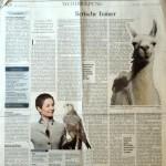 Berliner Tagesspiegel titelt am 15.01.2015: ierische Trainer