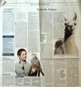 """Berliner Tagesspiegel titelt am 15.01.2015: Tierische Trainer"""" (Zum ganzen Artikel auf das Bild klicken)"""