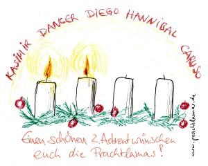 Wir wünschen Ihnen einen schönen 2. Advent, Ihre Prachtlamas