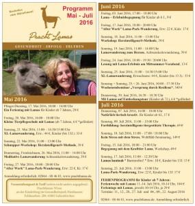 Die aktuellen Prachtlamas-Flyer sind fertig und liegen im Gesundheitspark aus!