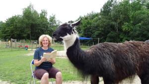 """Lesung mit Lamas - Beate Pracht liest auf der Lamawiese aus ihrem Buch """"Das Herz, unser Glückmuskel"""", Lama Diego hört auch zu, Foto: Prachtlamas"""