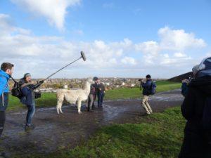 """Dreh für das WDR Fernsehen """"Lust auf Wandern"""" auf der Halde Rungenberg, Ruhrgebiet mit Lamas"""