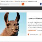 Last Minute: Gutschein online bei Revierkönig Erlebnisgeschenke-NRW bestellen für unsere Lamawanderungen
