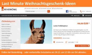 Last Minute: Gutschein online bei Revierkönig Erlebnisgeschenke-NRW bestellen für unsere Lamawanderungen in Gelsenkirchen