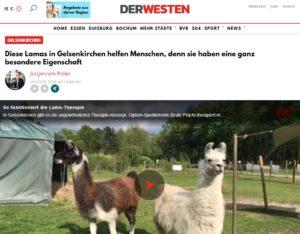"""Bericht auf DerWesten.de, Artikel von Jürgen von Polier """"Diese Lamas in Gelsenkirchen helfen Menschen"""""""