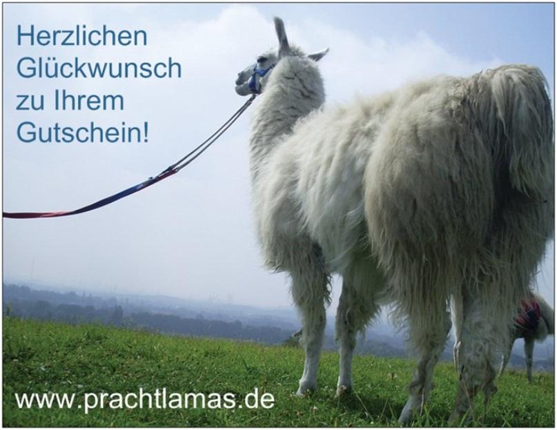"""Gutschein Postkarte """"Herzlichen Glückwunsch zum Gutschein"""""""