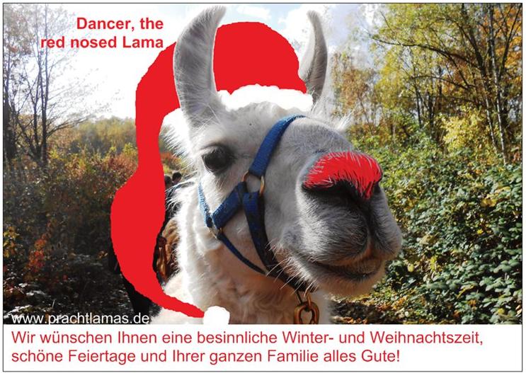 """Postkarte Dancer als """"Weihnachtslama 2018"""" - Wir wünschen frohe Weihnachten und ein gesegnetes Jahr 2019!"""