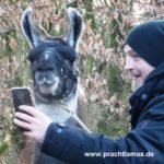 Selfietime - Torsten Sträter unterwegs mit den Prachtlamas für WDR Sträters Männerhaushalt Folge 18 - Ausstrahlung am 30.03.2019 um 21:45 Uhr. Foto: Beate Pracht