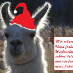 Dancer ist das Weihnachts-Lama 2019 und wünscht euch allen frohe Weihnachten!