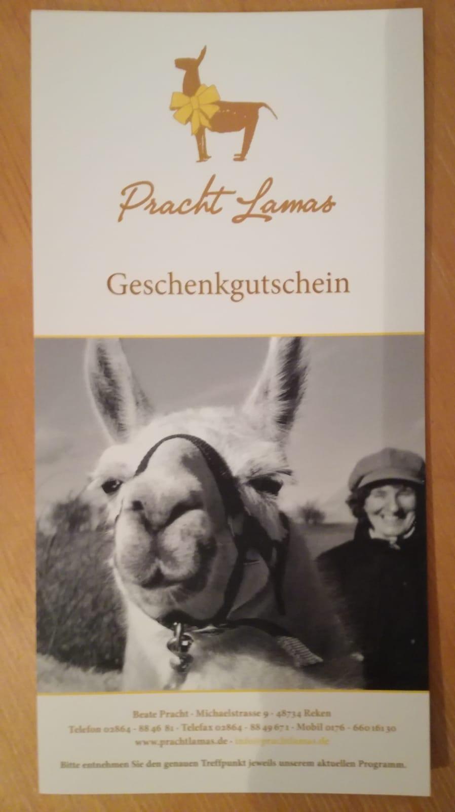 Prachtlamas-Geschenk-Gutschein