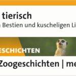 WDR 4 - Radio- Einfach tierisch -Simoe Sombecki erzählt von den Prachtlamas 2019-12-06